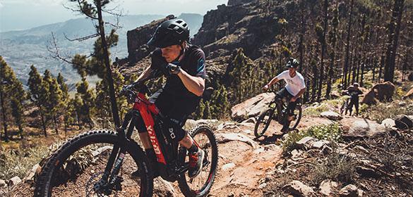 Haibike  El-Mountainbikes
